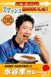 水谷隼カレーの購入方法はこちら ネット販売で価格は500円